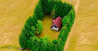 16 Isolated Houses That Can Bring Peace to Your Soul