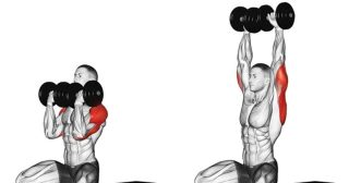 11 Shoulder Exercises That Would Make Arnold Schwarzenegger Proud of You